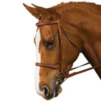 Collegiate Raised Padded Fancy Stitched Bridle