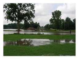 our flooded pasture picture 1